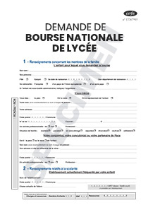 Cerfa 11319 14 Demande De Bourse Nationale Lycee