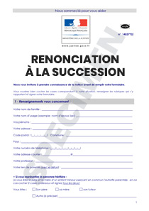 formulaire de renonciation la succession cerfa 14037 02. Black Bedroom Furniture Sets. Home Design Ideas