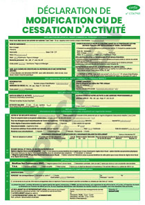 Cerfa 13905 02 Demande De Modification Ou De Cessation D Activite