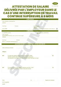 CERFA 11136-03 : Attestation de salaire délivrée par l'employeur pour une interruption ...